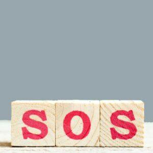 "Urgent consideration of a request including<em><span style=""color: #009292;""> a 30-minute consultation</span></em>"